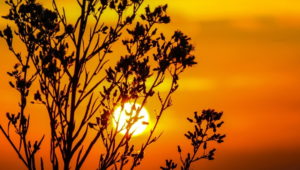 ¿Cómo influye el Sol en el calentamiento global?