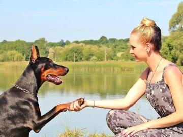 El yoga con animales, una iniciativa cada vez más extendida en algunas ciudades de EEUU