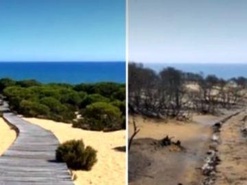 El antes y el después de Doñana tras el incendio de Huelva: de paisaje paradisíaco a zona arrasada por el fuego
