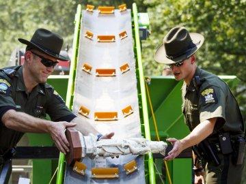 Pulverizan dos tonelada de marfil en Nueva York contra el tráfico ilegal