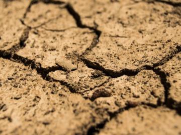 Tierra agrietada por la falta de agua