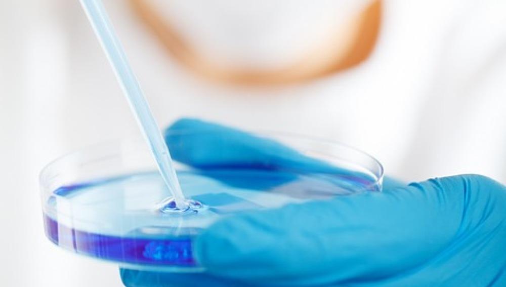 La pérdida de memoria se puede revertir interfiriendo en la enzima HDAC2