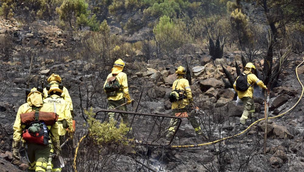 Bomberos sofocando un incendio forestal en Marbella, Málaga