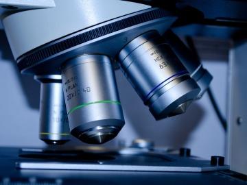 Imagen de un microscopio