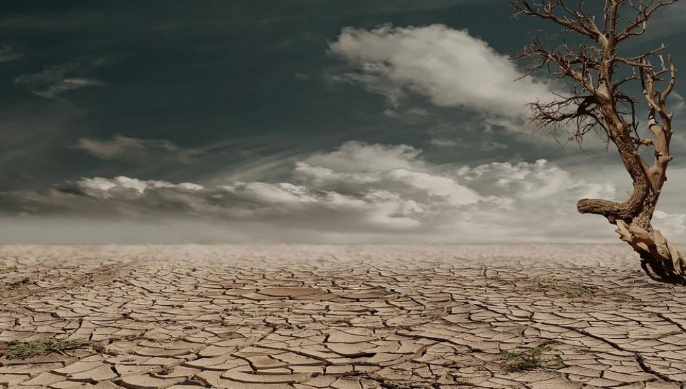 En 2030 habrá más de 500 millones de pobres a causa de la desertificación