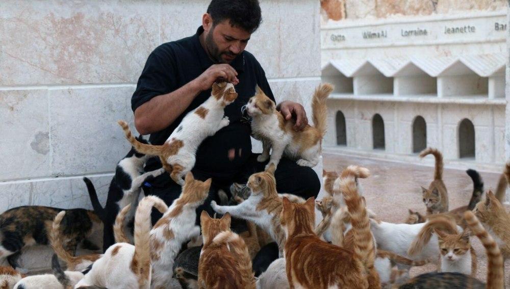 El hombre de los gatos de Alepo
