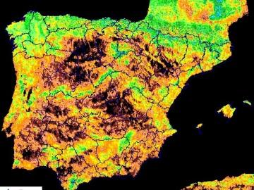 Estado de la vegetación en España a 31 de octubre de 2017
