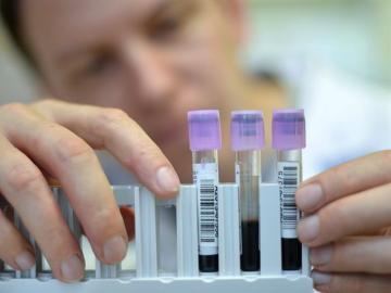 La falta de compromiso del Gobierno por la ciencia puede llevar al colapso