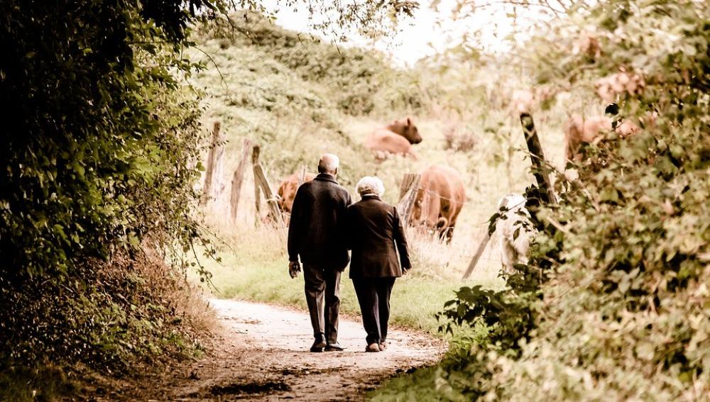 Desarrollan una herramienta que podría evaluar el riesgo de padecer Alzheimer