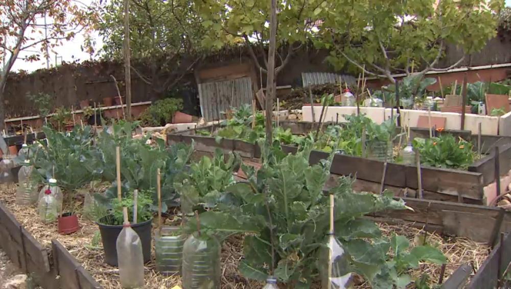 Vivir en una ecoaldea, una forma de vida que contribuye a la protección del medio ambiente