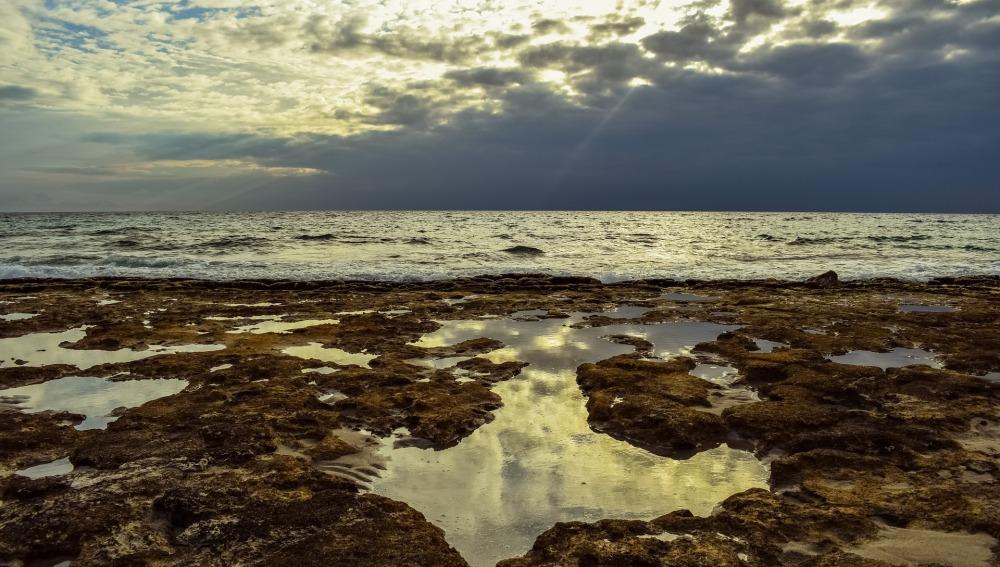 Los mares se deterioran