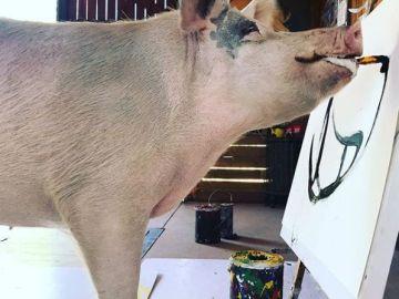 'Pigcasso', la cerda artista que pinta sorprendentes cuadros