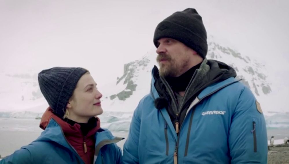 El poli de 'Stranger Things' baila con pingüinos y se suma a la petición de Greenpeace para crear un santuario Antártico