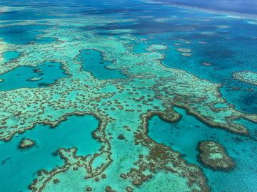 Fotografía facilitada por la Autoridad del Parque Marino de la Gran Barrera de Coral