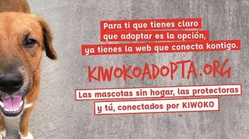 'KiwokoAdopta',