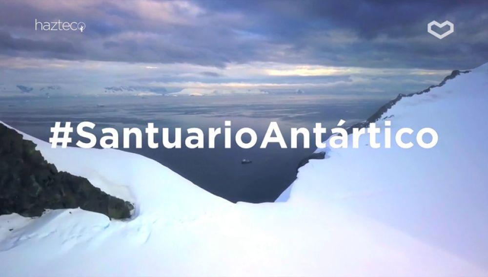 Hazte Eco se une Greenpeace para convertir el Antártico en la mayor área protegida del mundo