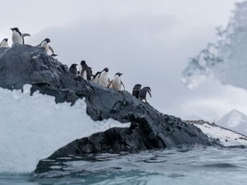El aumento de temperaturas está provocando un deshielo acelerado en el Ártico