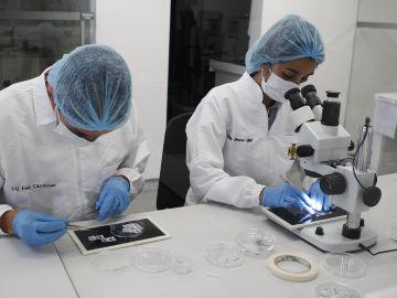 Descubren que la prueba del VPH detecta antes el cáncer de útero