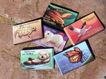 Condones gratis para concienciar sobre los animales en peligro de extinción