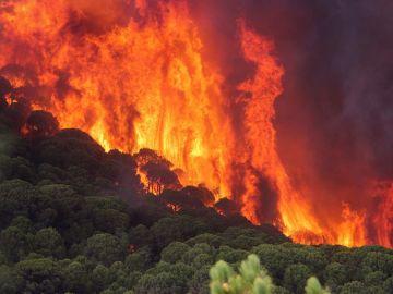 2018 presenta el mejor balance en incendios forestales de los últimos diez años