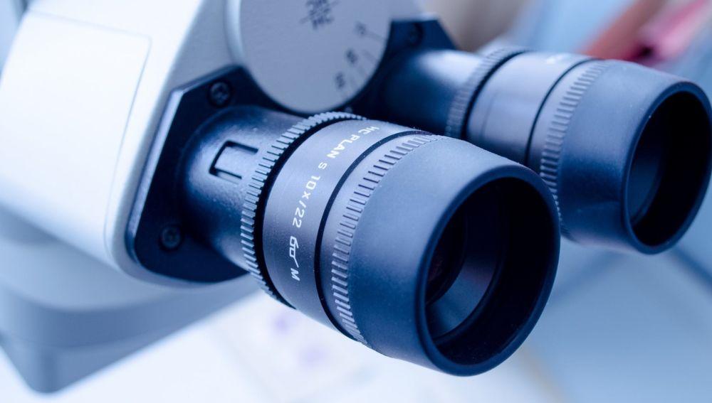 Descubren las características de una proteína clave en la inmunodepresión