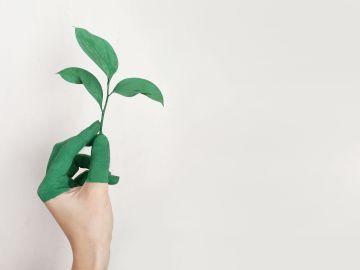 El CPIFP San Blas será centro de referencia nacional en respeto al medioambiente y bioeconomía