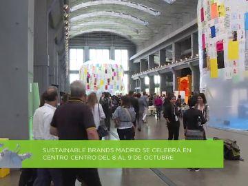 Octubre, el mes más ecológico por el festival de cine y evento internacional sobre sostenibilidad