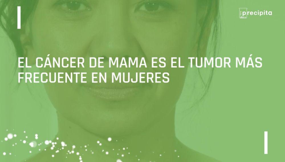 Investigadores del CNIO contra las células madre del cáncer de mama