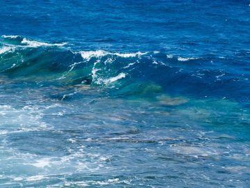 Las olas de calor marinas amenazan la biodiversidad de los oceanos