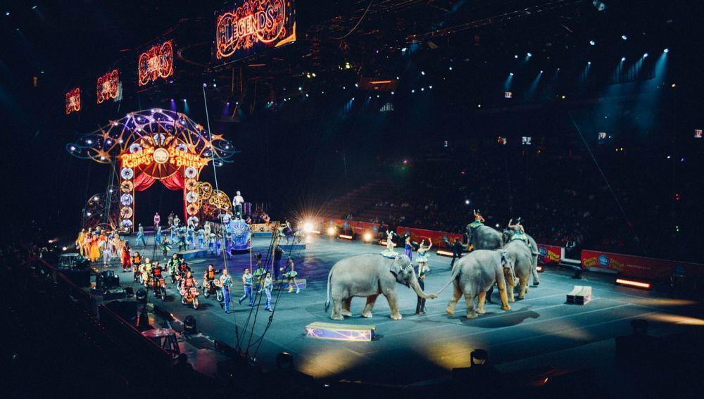 Circo con animales salvajes