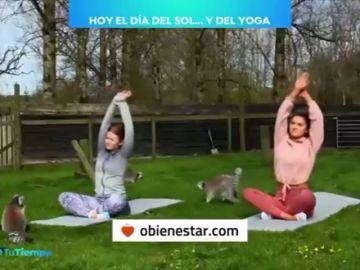 En el Día Mundial del Yoga recordamos sus múltiples beneficios para la salud y el bienestar personal