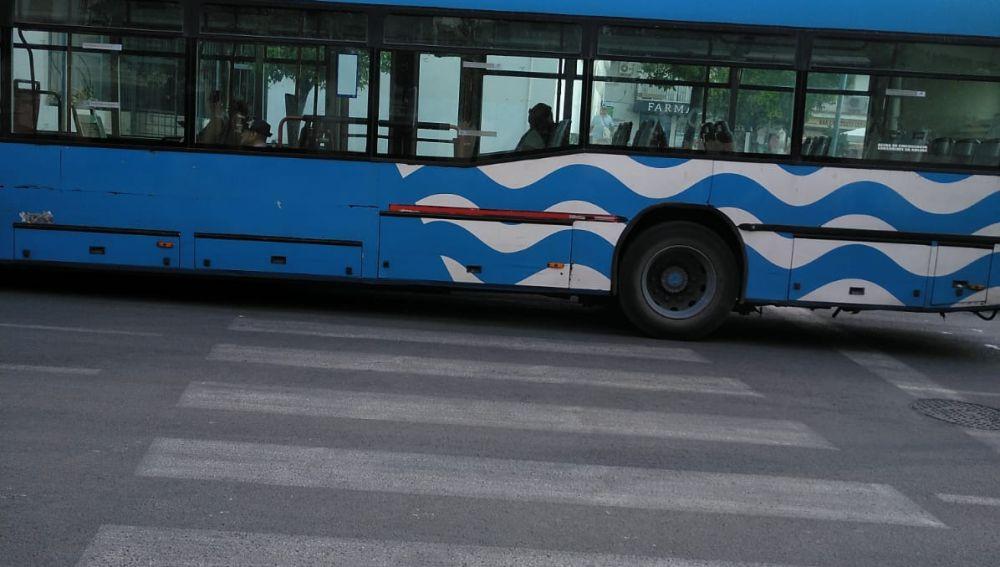 Paso de cebra entre autobuses
