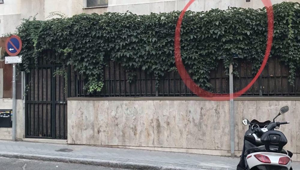 Señal de aparcamiento oculta