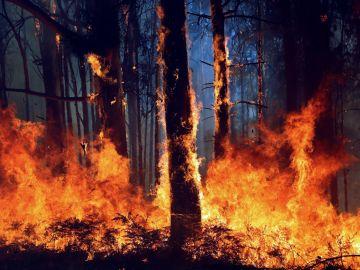 La aldea de A Carballosa, en Porto do Son ha sido afectada por un gran incendio forestal