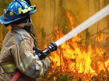 Algunas noticias falsas hablan también de que los ecologistas tratan de frenar el trabajo de los bomberos.