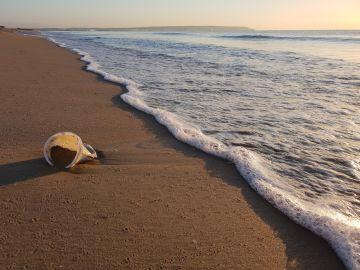 Vaso de plástico en una playa
