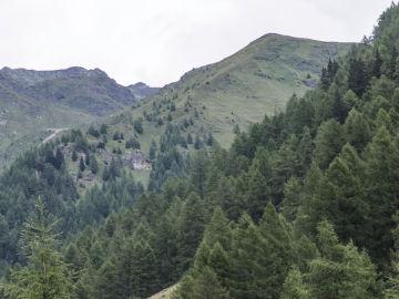 Imagen de un parque natural