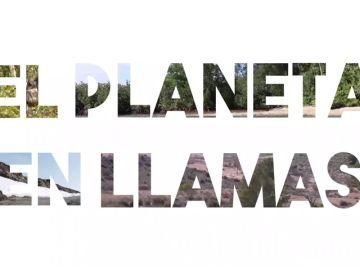 WWF pide medidas urgentes de prevención para hacer frente a los nuevos incendios forestales