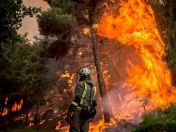 Un bombero realiza labores de extinción en el incendio forestal que permanece activo en el municipio orensano de Toén
