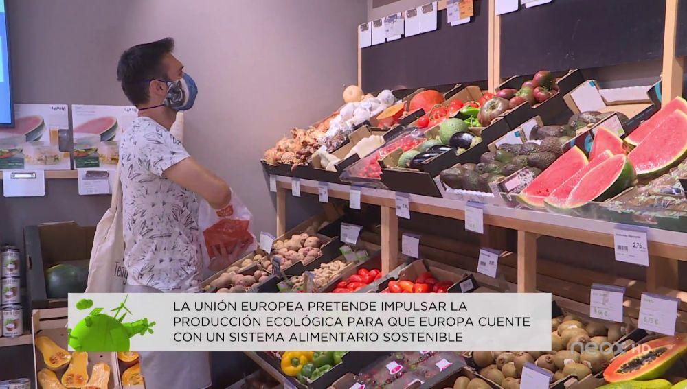 ¿Qué medidas va a adoptar España para aumentar el consumo de alimentos ecológicos?