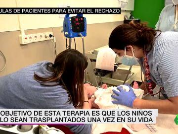 Nueva terapia para evitar el rechazo de órganos trasplantados en niños