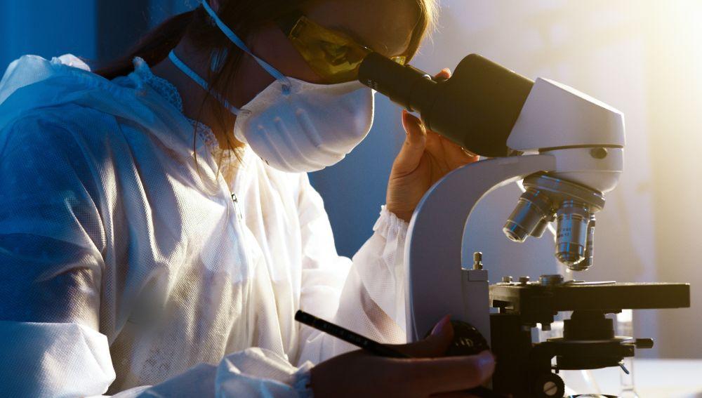 Estudio de un nuevo tratamiento contra el cáncer
